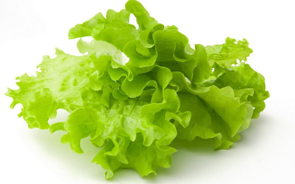 бізнес-ідея вирощування та продажу зелені