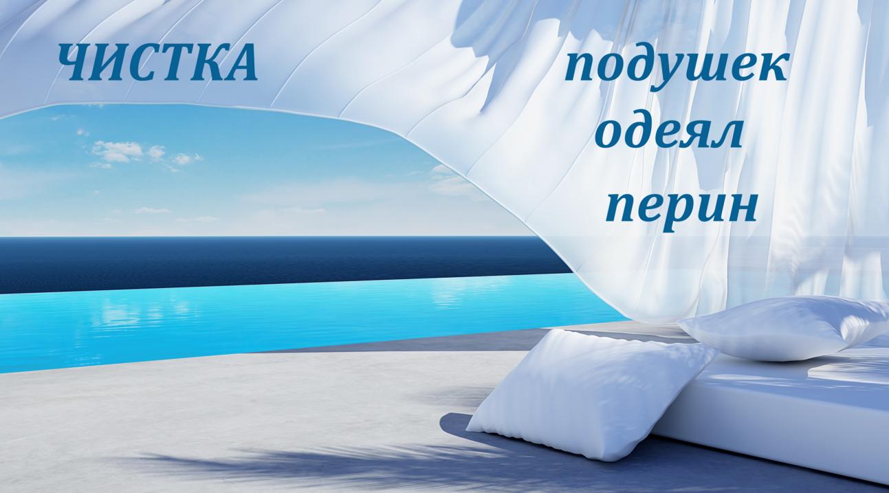 бізнес-ідея чистка подушок