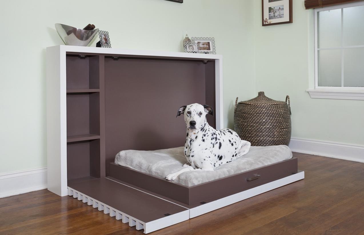 как организовать бизнес по изготовлению мебели для домашних животных