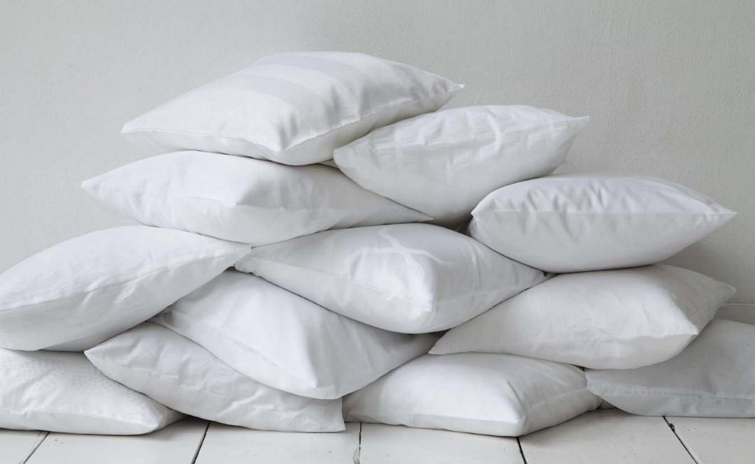 як організувати бізнес з чищення подушок