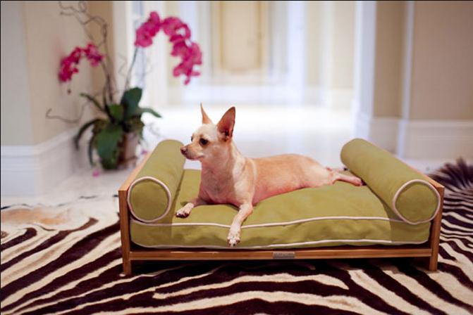 как организовать изготовление мебели для животных