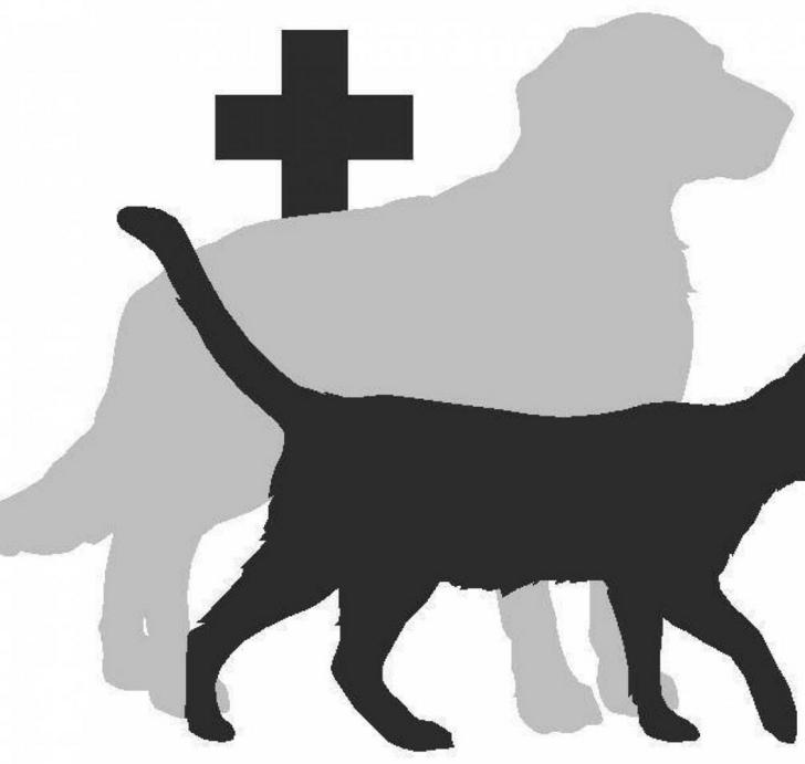 як організувати відкриття ветеринарної аптеки