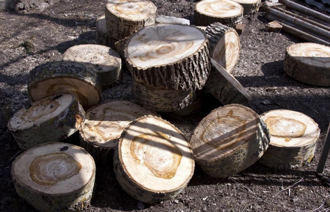 Бизнес по изготовлению садовых дорожек из дерева