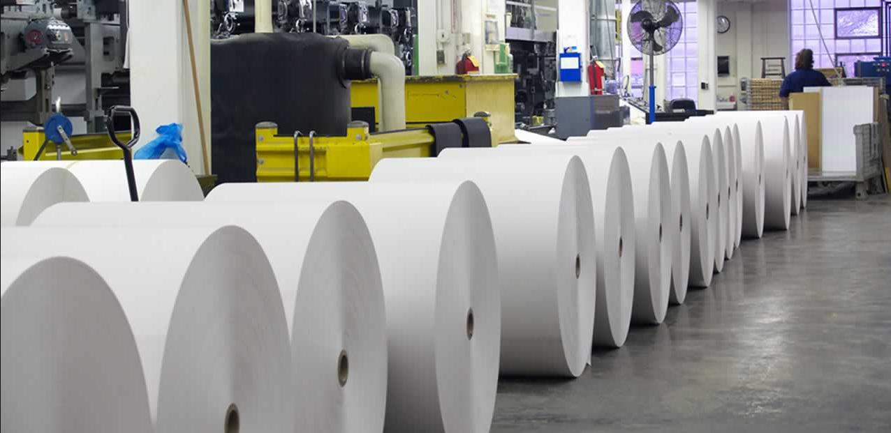 Как организовать бизнес по производству туалетной бумаги