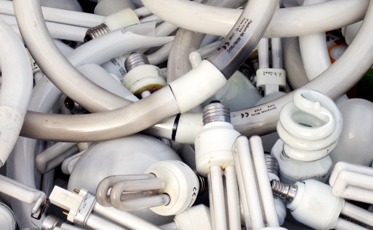 Как организовать бизнес по утилизации энергосберегающих ламп