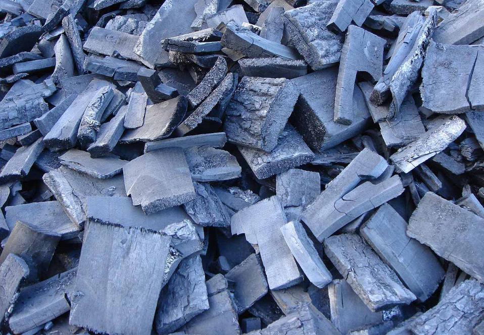 як організувати бізнес з виробництва деревного вугілля