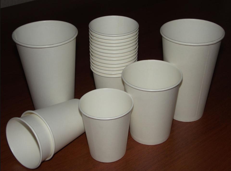 бізнес-ідея виробництва паперової посуду