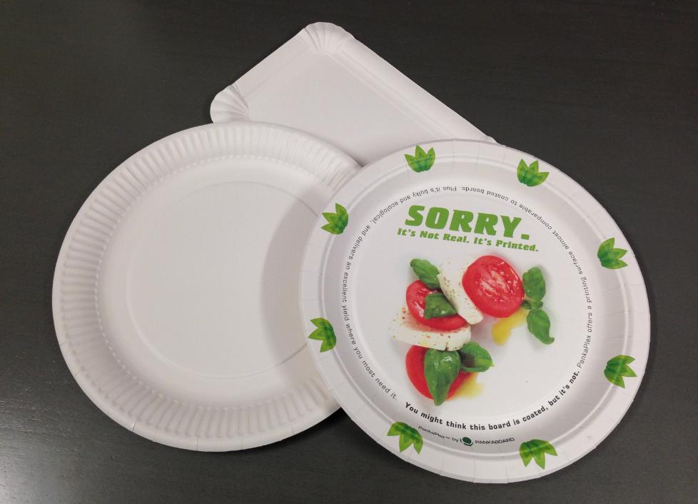 як організувати бізнес з виробництва паперової посуду