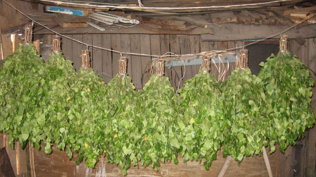 бізнес ідея виробництва віників для лазні