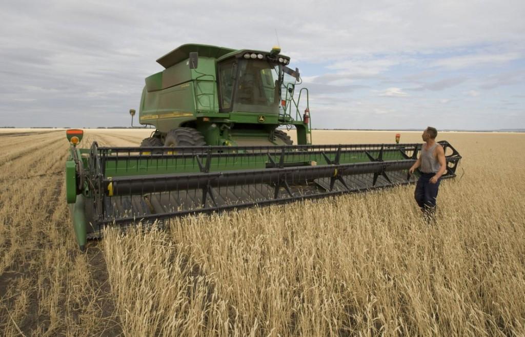 бизнес-идея планирования фермерского бизнеса