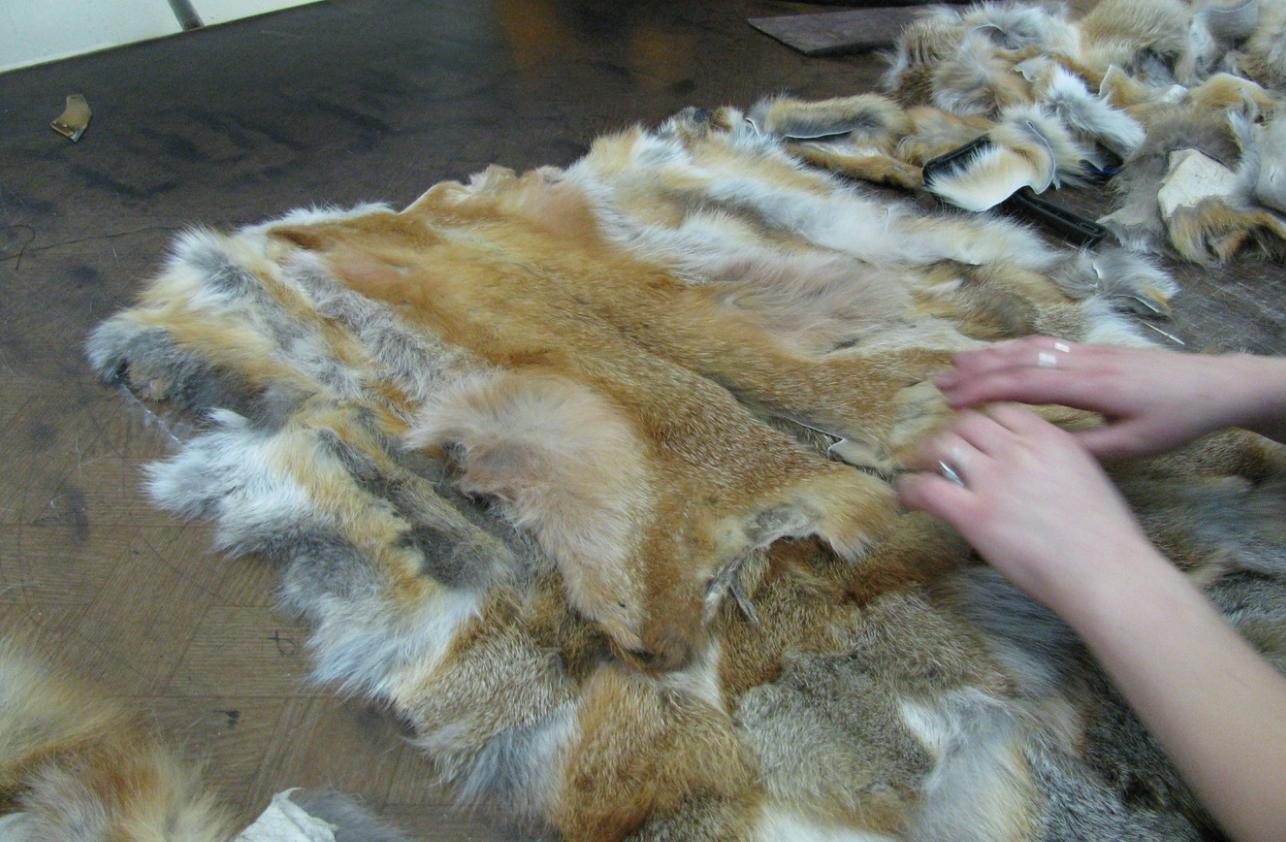 как организовать бизнес по пошиву изделий из меха