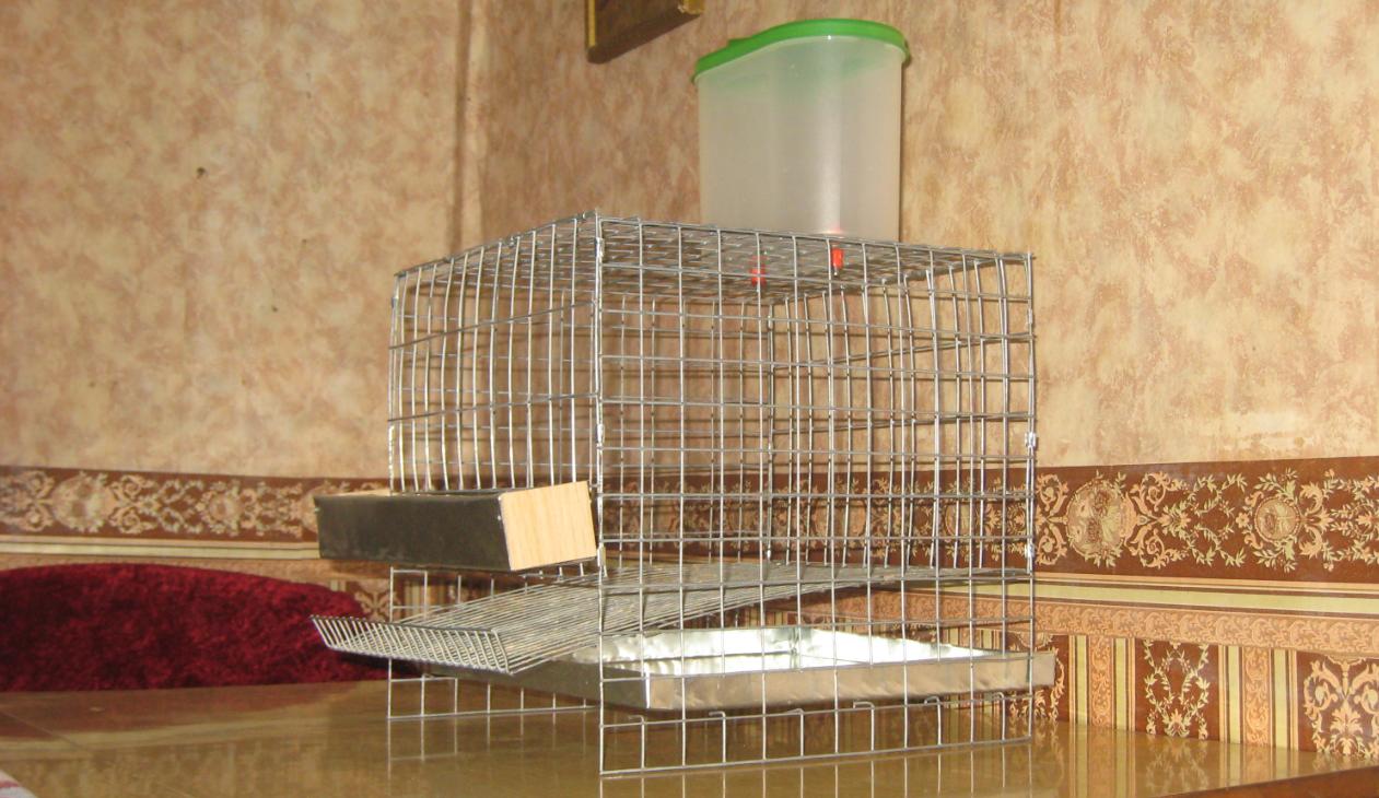 бізнес ідея виготовлення кліток для тварин