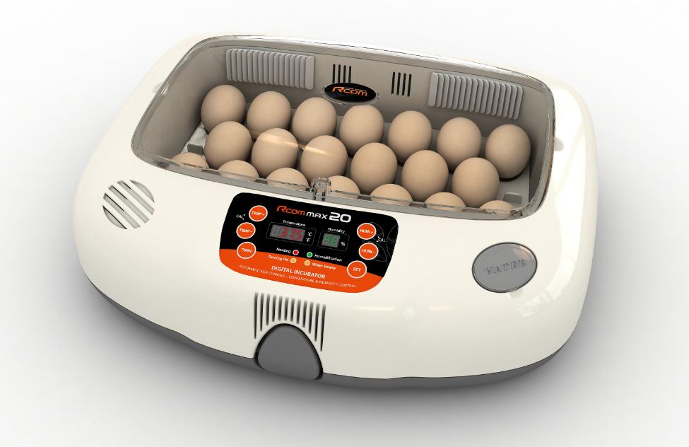 як організувати бізнес по виведенню пташенят з інкубатора