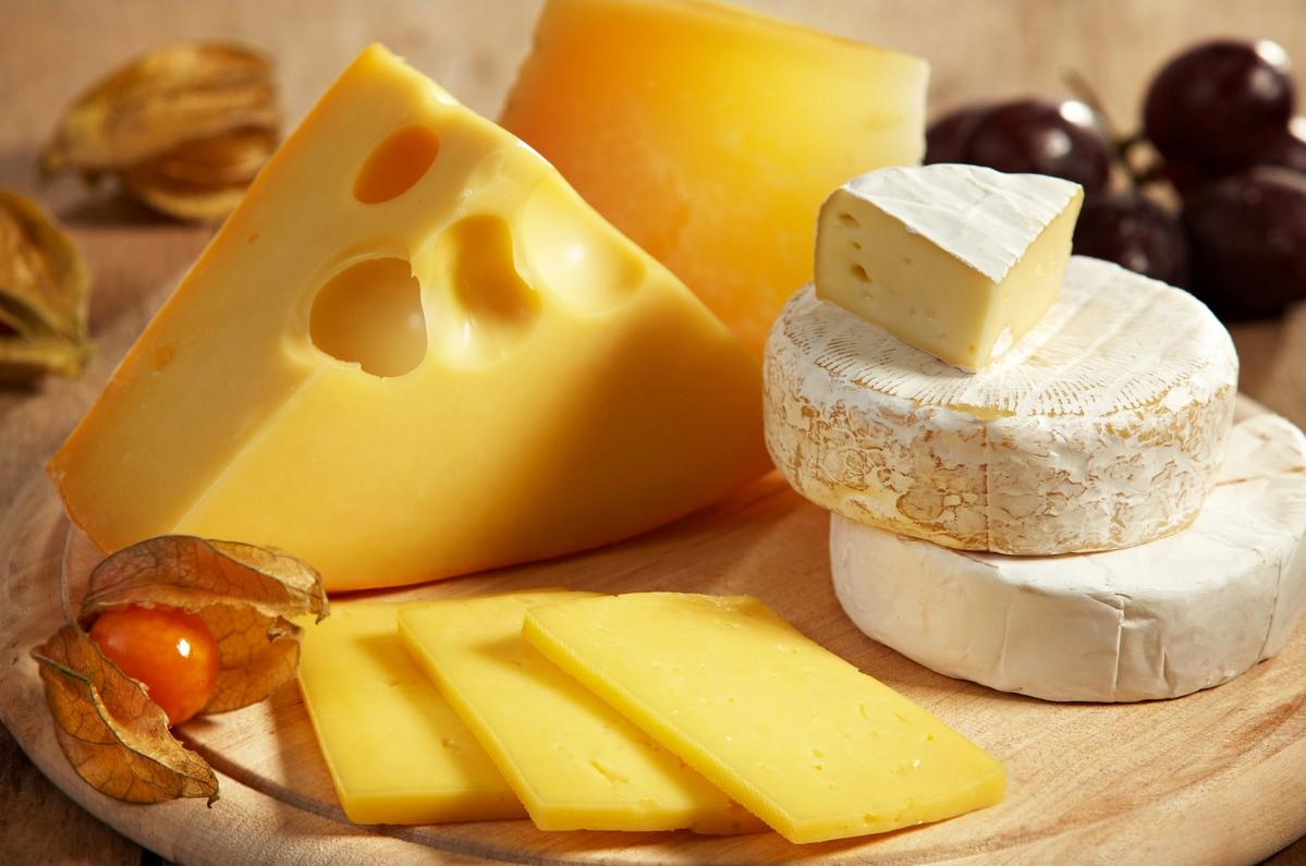 бізнес-ідея виробництва сиру