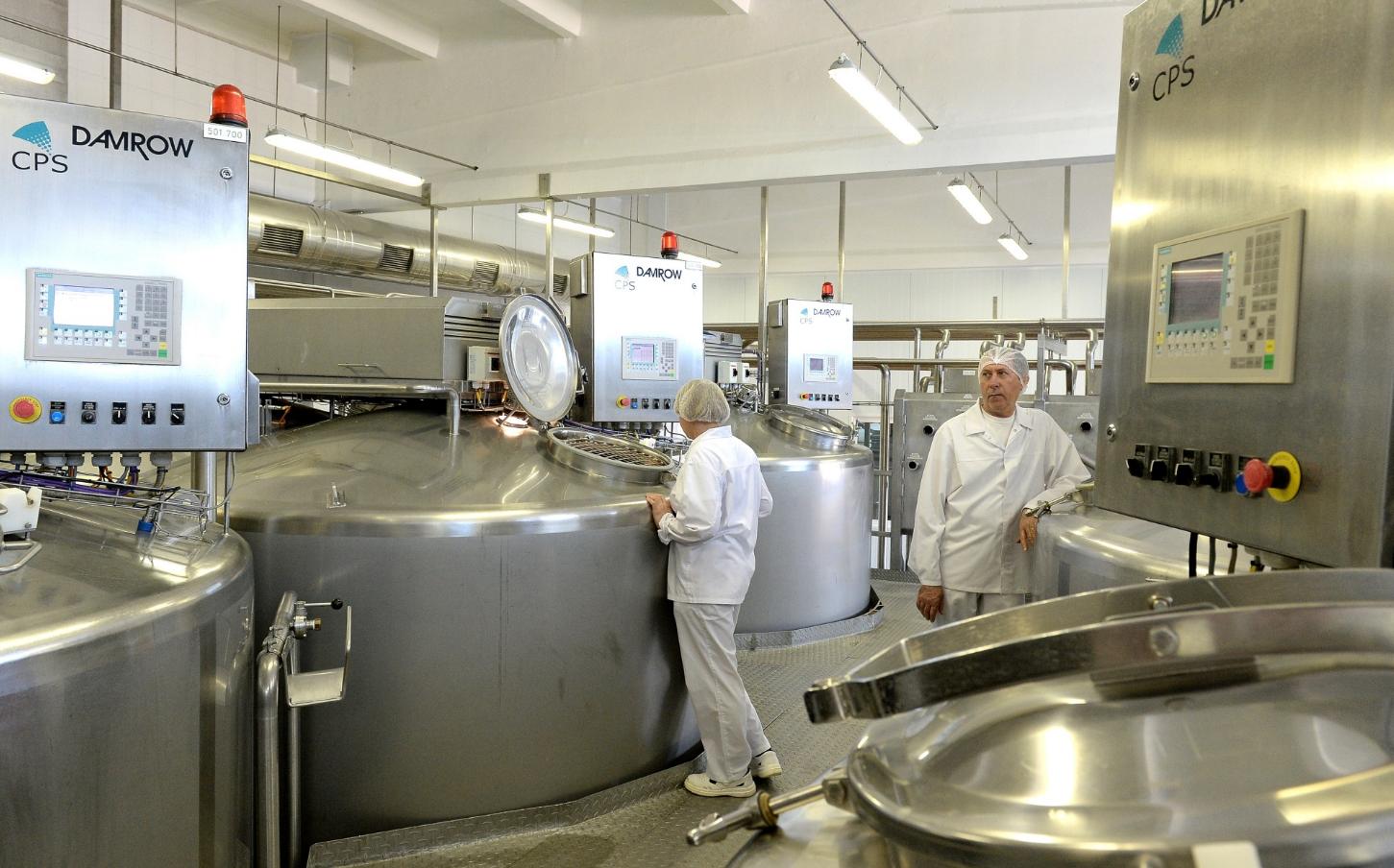 як організувати виробництво сиру