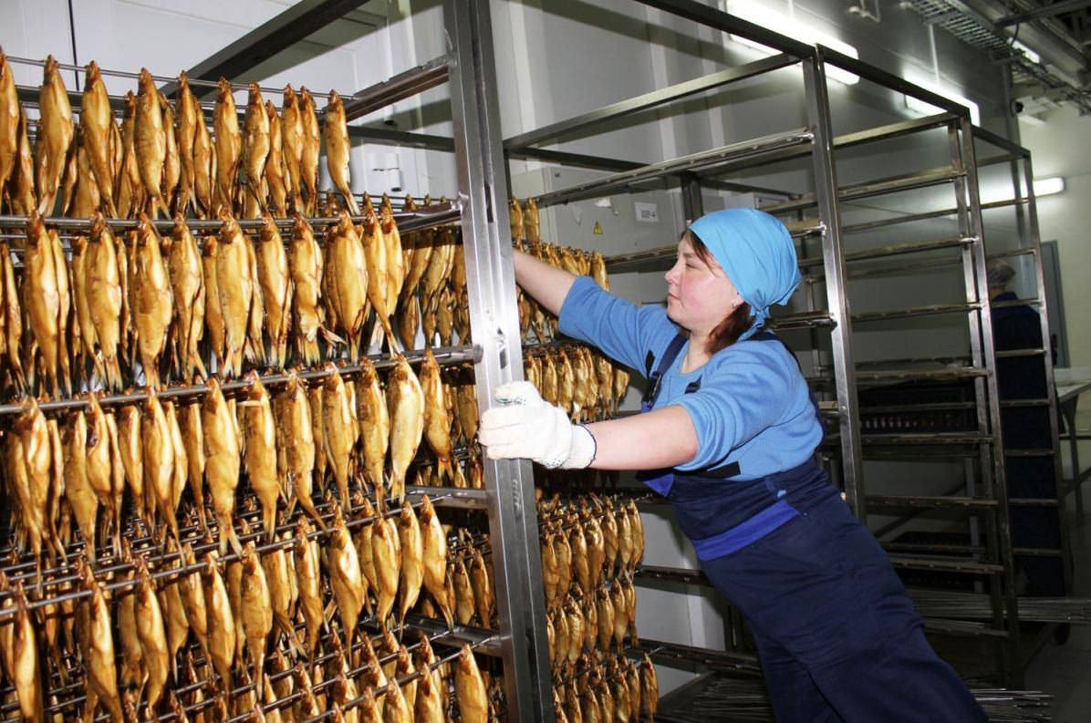 Как организовать бизнес по производству копченой рыбы