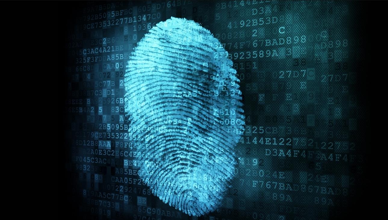 Бизнес-идея тестирования отпечатков пальцев