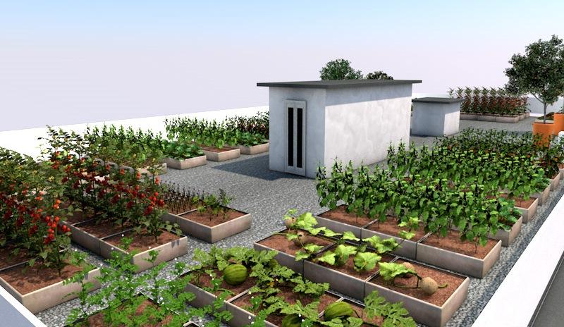 Бизнес идея по выращиванию реальных овощей на виртуальном огороде. Как продавать овощи, которые еще не выросли