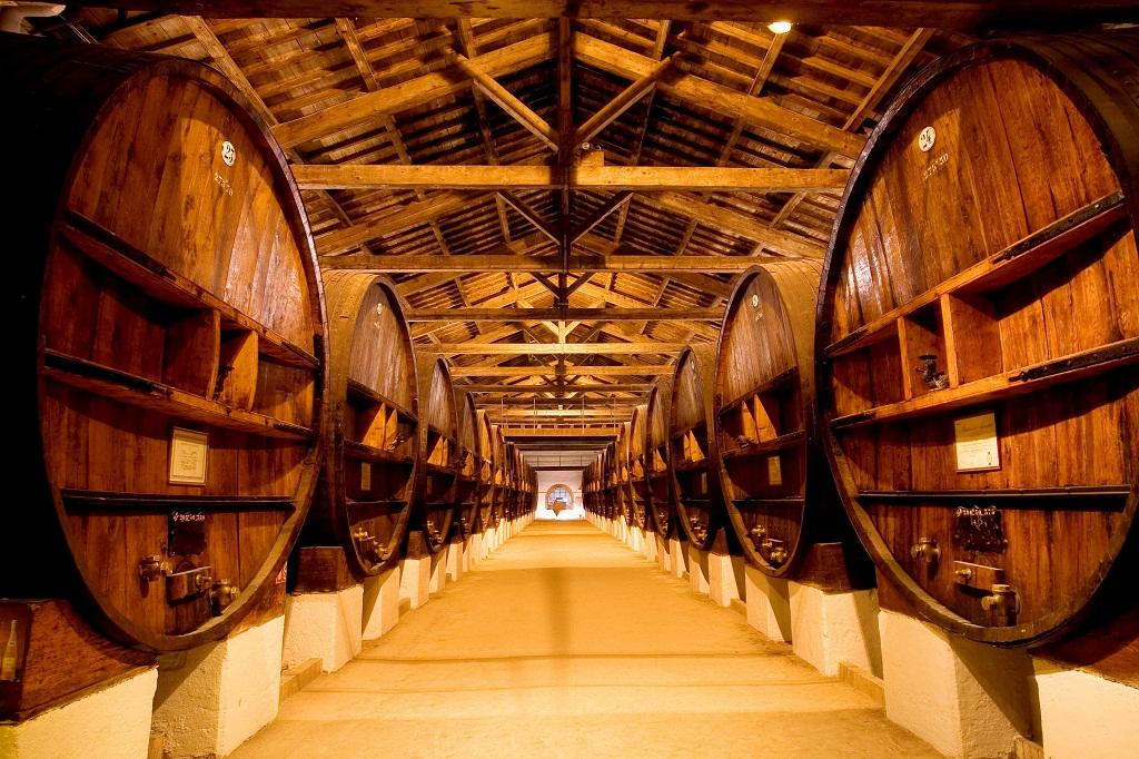Бизнес-идея производства вина