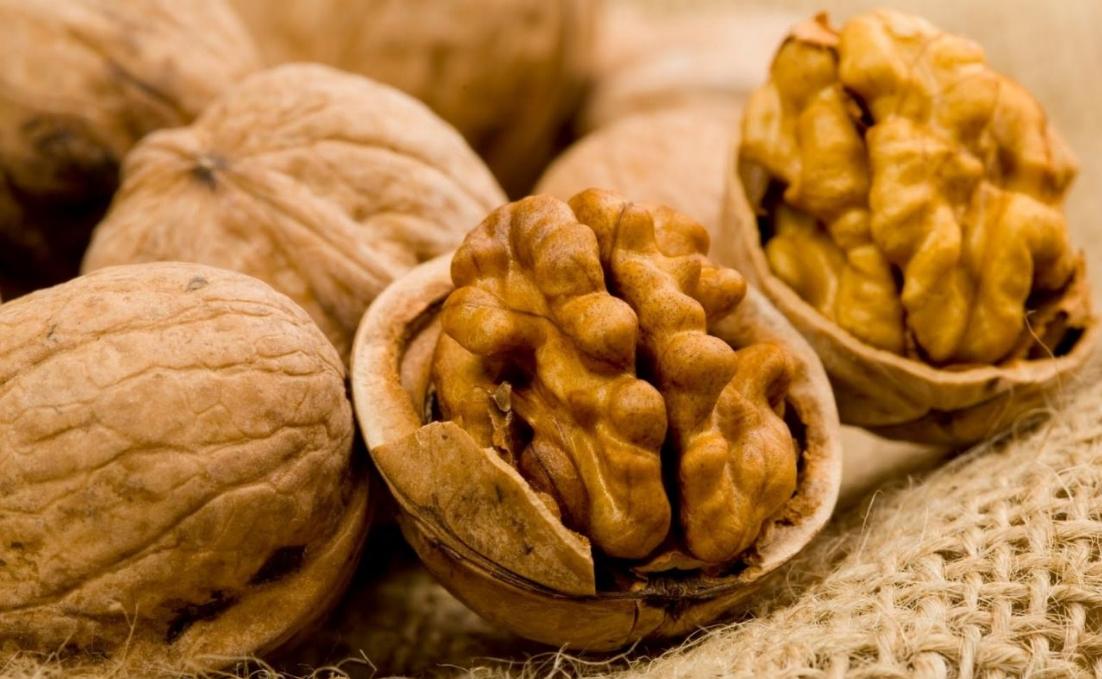 Бизнес-идея выращивания орехов