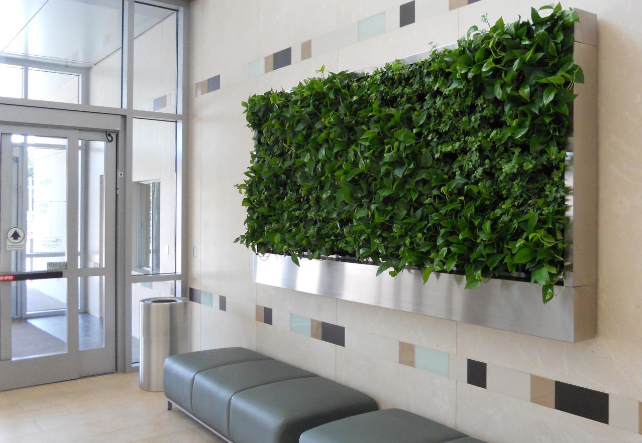Как организовать бизнес на вертикальном озеленении