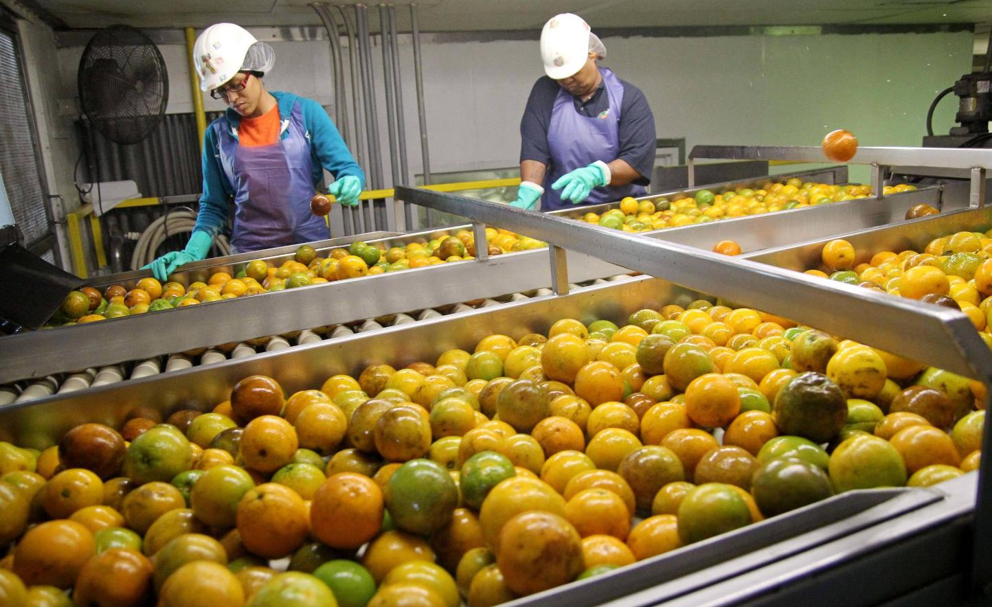 Бизнес план производство соков бизнес план фермерских хозяйств