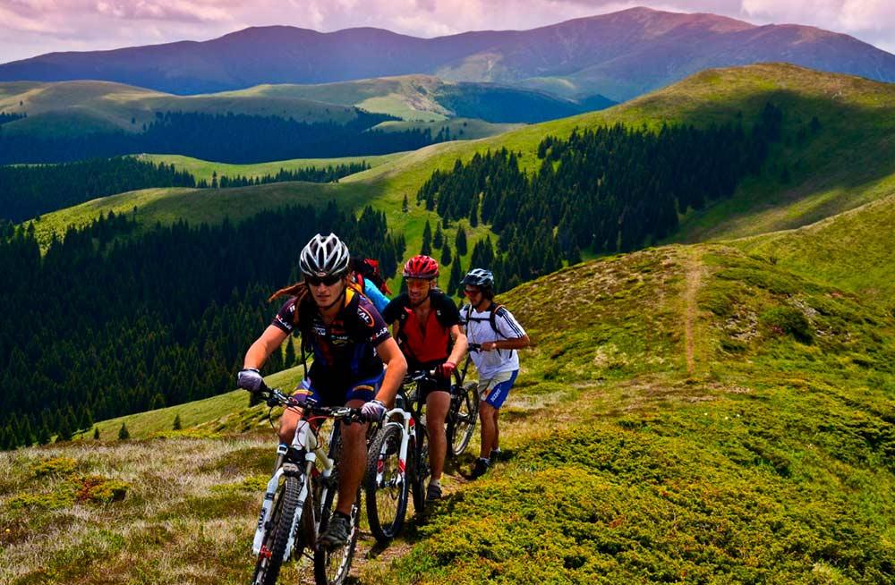 Бизнес-идея организации велотуров