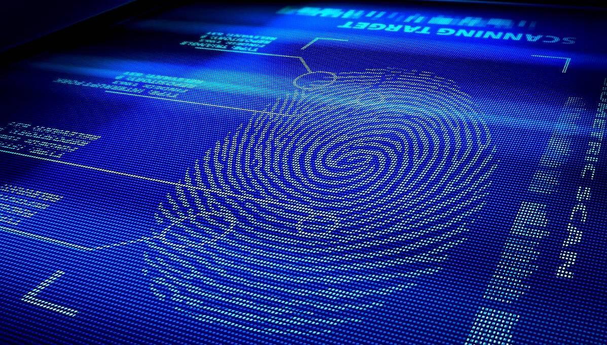 Бизнес-идея по биометрическому исследованию отпечатков пальцев