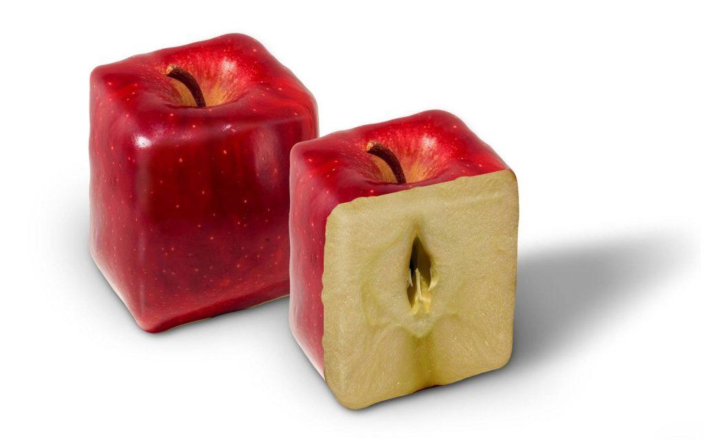 Как открыть бизнес по выращиванию овощей и фруктов специальной формы с нуля, с чего начать и сколько можно заработать