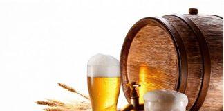 Две кружки пива и солод у бочки